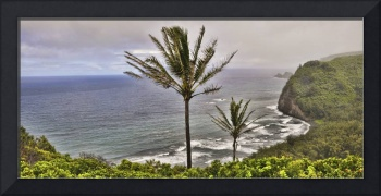 Pololu Valley Overlook Panorama