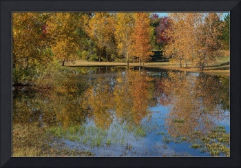 Colorful Autumn Pond Reflections