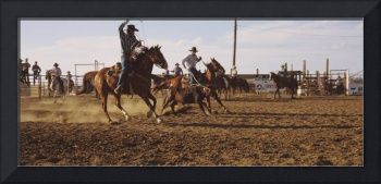 Cowboys roping a calf