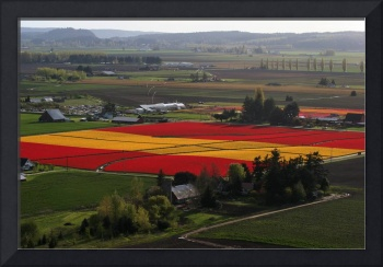 Spanish flag from above