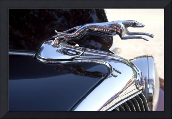 Ford Greyhound Hood Emblem