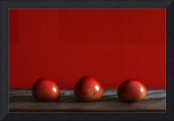Three Tomatoes - Still-Life