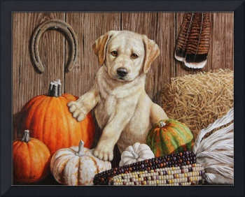 Pumpkin Harvest Puppy