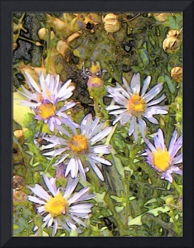 FLOWER WEED Photographic Art Greeting Cards