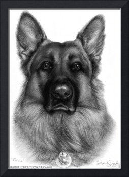 Memorial Portrait of RIkko, German Shepherd K9 Off
