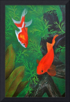 Henry II & the Fantail Goldfish