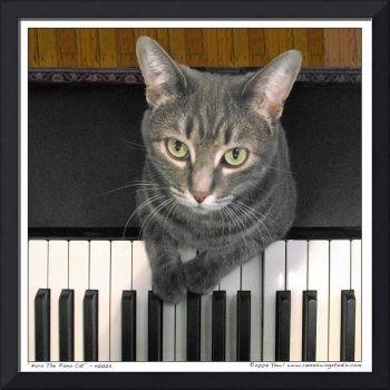 Nora The Piano Cat™ - n0005