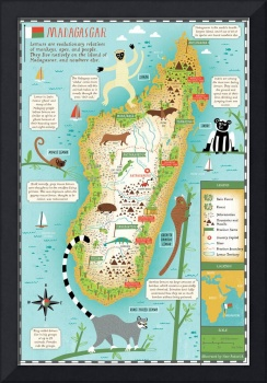 Illustrated Map of Madagascar by Nate Padavick
