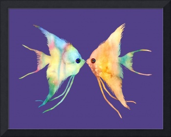 Angelfish Kissing on Ultra Violet