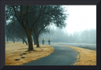 Foggy Day Cycling