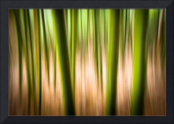 Vitality - Abstract Panning Landscape Photography