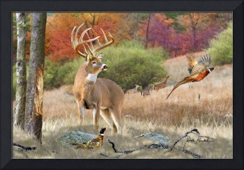 Whitetail Deer Art - His Name Is Prince