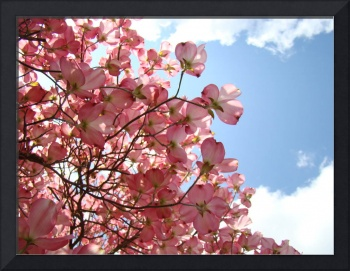 OFFICE ART Landscape Trees Pink Dogwood Flowers