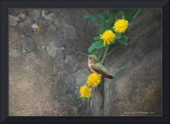 dandelion rock with honey bee and hummer