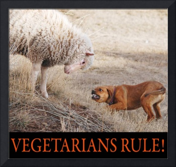 vegetarians rule--my lamb and dog
