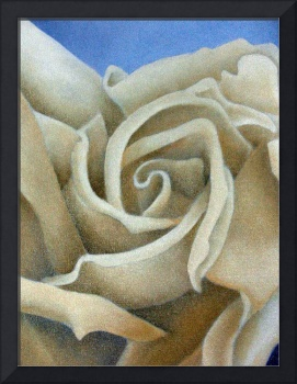 Abstract Cream Rose