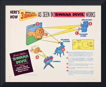3-D Process Diagram from BWANA DEVIL