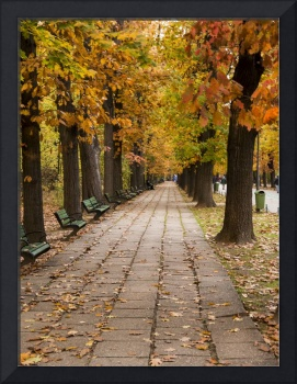 Bucharest Autumn Stroll