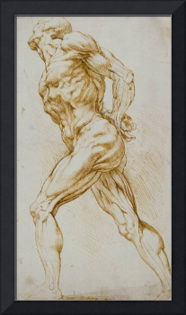 Anatomical study: A nude striding to the right, hi