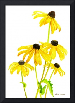 Yellow Black Eyed Susans with signature
