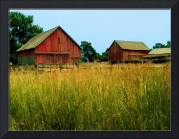 Barns in the Pasture