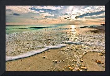 Beautiful Beach Sunset Sea Shells on Beach Picture