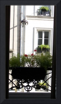 Paris Window Box and Flowers