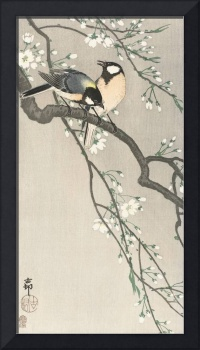Japanese Birds on a Cherry Branch by Ohara Koson