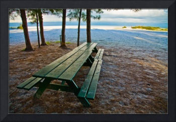 Picnic Tables on the Beach