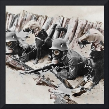German Soldiers and Dogs in Gas Masks