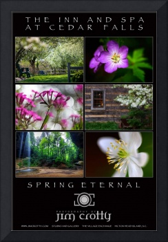 Spring Eternal at The Inn at Cedar Falls