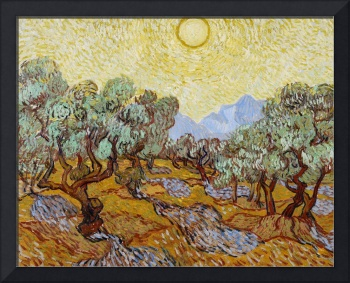 Olive Trees, 1889 (oil on canvas)