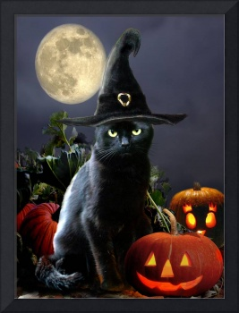 Black Halloween cat with witch hat