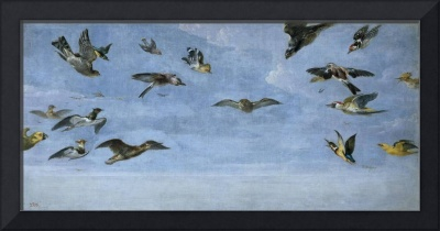 An owl and a multitude of birds, SNYDERS FRANS