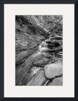 Conklin Gully Rushing Stream in B&W by D. Brent Walton