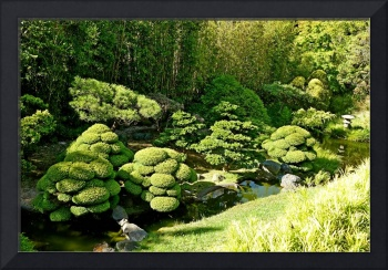 SF Japanese Tea Garden Study 8