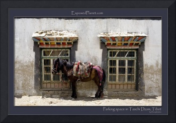 Parking space in Taschi Dzom, Tibet