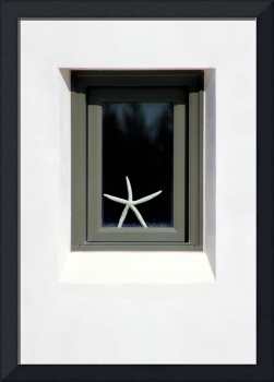 Starfish Window 2016 No.2