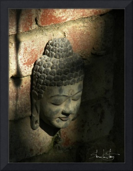 Buddha In Darkness and Light