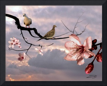 Doves in Cherry Tree