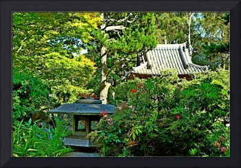 SF Japanese Tea Garden Study 5