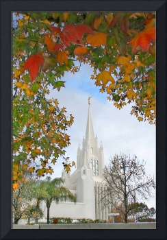 Autumn Leaves at the San Diego Temple