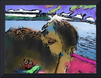 Bearded Collie on boat