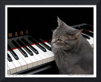 Nora The Piano Cat™ - n0013