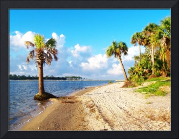 Indian Pass_St. Vincent Island Beach III