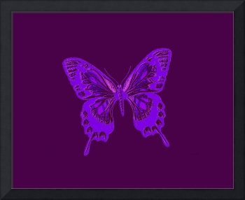 Glowing Blue Violet Butterfly on Violet Background