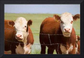 Two Cows Digital Art