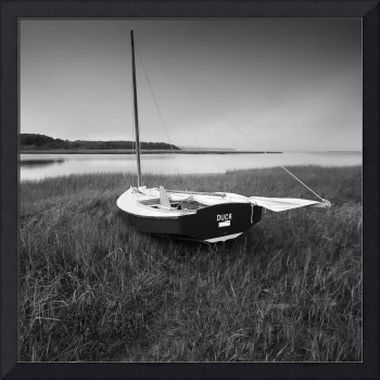 DUCK Sail Boat Black and White Photography