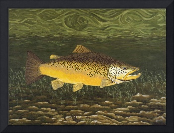 Fine Art Prints Brown Trout Lake Fishing Nature