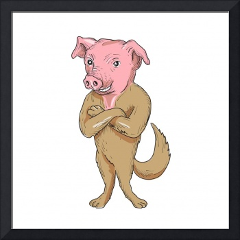 Pig Dog Standing Arms Crossed Cartoon